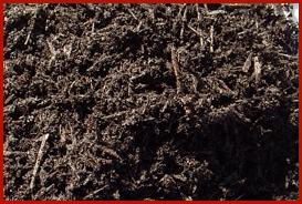 tierra negra